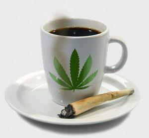 cannabis-cafe