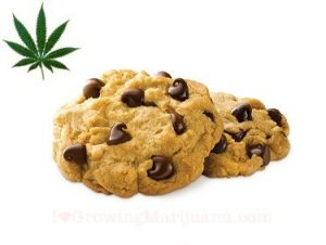 marijuana-recipes-chocolate-chip-cookies-1